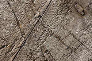 Brown old wood texture photo