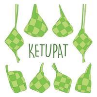 Uncooked Ketupat Icon Set vector