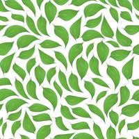 Green leaves seamless pattern on white background vector