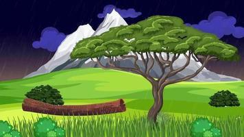 el árbol solitario en una noche lluviosa video