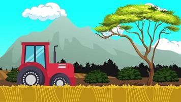 trabajando en la granja de trigo por la mañana video