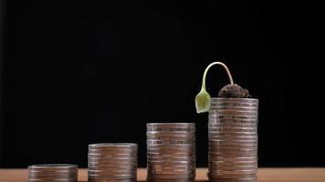 Detener el movimiento de un pequeño árbol que crece sobre una pila de monedas para un concepto de crecimiento empresarial video