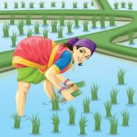 Tamil woman farmer working in paddy field vector