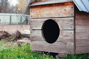 Big wooden doghouse on a house backyard photo