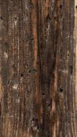 Fondo de textura de madera vertical paneles antiguos foto
