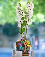 Flor de orquídea blanca dendrobium nobile en la maceta pintada foto