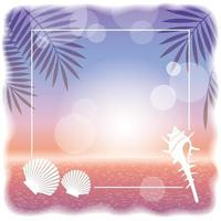 Square Vector Sunset Ocean Background With Palm Leaves Silhouette And Shellfishes
