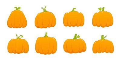 8 orange pumpkins set with leaf and gradient colors flat style design vector illustration