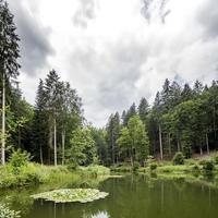 Lago de montaña con árboles y montañas boscosas contra un cielo nublado foto
