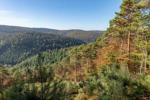 Vistas a un valle arbolado con pinos y árboles de hoja caduca en otoño con el cielo azul foto