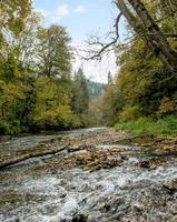Arroyo de montaña alemán que fluye a través del bosque foto