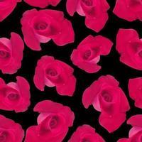 vector, rosas rojas, realista, seamless, fondo, en, un, fondo negro, impresiones, para, ropa vector
