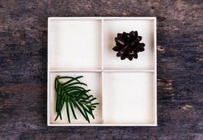 A white box with compartments on a wooden background filled with tree cone and pines photo