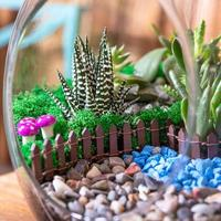 Beautiful terrarium with cactus flower rock sand decor small house in the glass photo