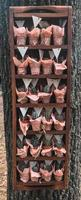 Many different small cacti in beautiful pink wrappers in a wooden box photo