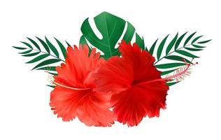 Red hibiscus flower with palm leaves isolated on white background vector