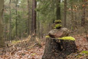 Torre de 3 areniscas apiladas en el suelo del bosque foto