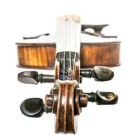 Old dark brown antique Violin isolated on white photo
