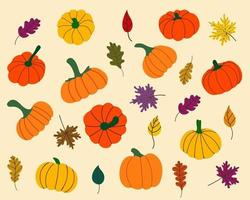 Autumn set with pumpkins and fallen leaves for Thanksgiving, Halloween. Design for stickers, postcards, packages, etc. Hand drawn vector