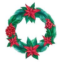 Round Christmas wreath made of cranberry berries, twigs and Poinsettia flowers. Festive watercolor wreath. vector illustration