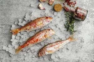arreglo creativo de pescado crudo foto