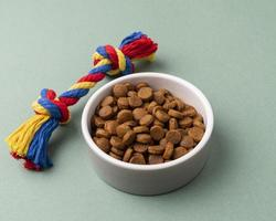 Pet accessories still life concept with food bowl photo