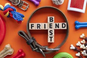 Pet accessories still life concept with best friend text photo