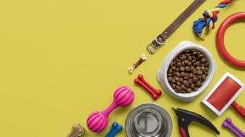 Pet accessories still life concept with leash and colorful toys photo