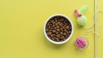 Pet accessories still life concept with cat teaser toy photo