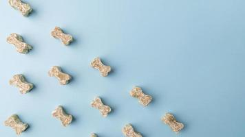 Top view on small dog treats in the shape of a bone photo