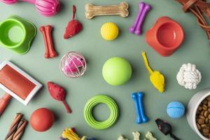Vista superior de coloridos accesorios para mascotas concepto de naturaleza muerta foto