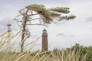 German lighthouse with slate pine and dry grass photo