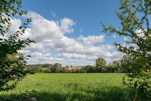 Ver a través de los árboles en un campo verde con colinas y cielo nublado foto