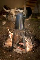 Old metal coffee pot stands over a campfire on a rack photo