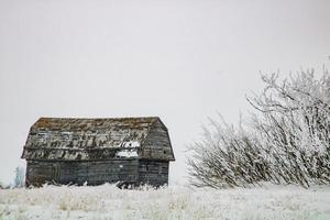 Abondoned farm buildings on a frosty morning Keoma Alberta Canada photo