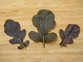 Leaves of mizuna F1 Red Empire on a wooden board photo
