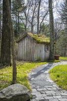 Old wooden house with a moss covered roof photo