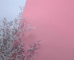 El plano de la flor púrpura tupida seca yacía sobre fondo rosa pastel y blanco foto