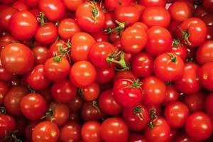 tomates rojos maduros foto
