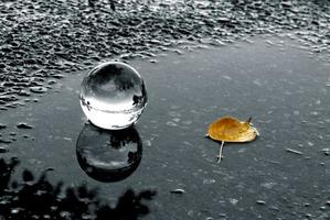 A lens ball and a yellow leaf in a puddle photo
