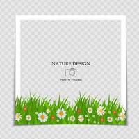 Natural Background Photo Frame Template with flowers for post in Social Network vector