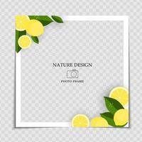 Natural Background Photo Frame Template with Lemom and leaves for post in Social Network vector