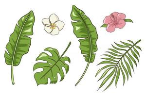Hand Drawn Tropical Flowers and Leaves Vector Isolated Elements Collection