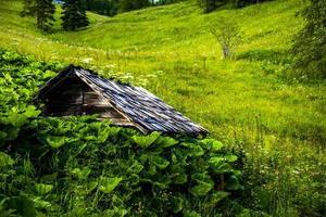 Cobertizo de madera cerca del lago de Levico, Trento Italia foto