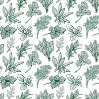 Seasonings and herbs pattern. Aromatic spices, healthy herbs. Basil, oregano, parsley, dill.Hand-drawn vector illustration.