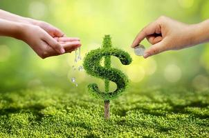 Tree grows into a shape pointing up the concepts of financial business growth photo