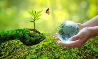 Concept Save the world save environment The world is in the grass of the green bokeh background photo