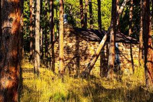 Cobertizo en el bosque de pinos en los senderos del parque Chautauqua en Boulder, Colorado foto