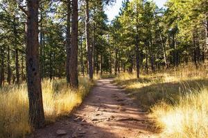 Camino en el parque Chautauqua en Boulder, Colorado foto