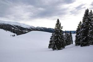 Mountains on the Asiago plateau, Vicenza, Veneto, Italy photo
